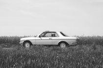 Ein Klassiker von Mercedes Benz. von Katrin Lantzsch
