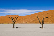 2 Dead Acacia Trees at Dead Vlei von Russell Bevan Photography