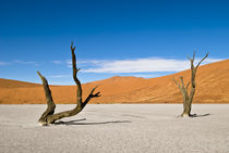 Dead Trees at Dead Vlei by Russell Bevan Photography