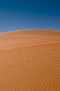 Red Sand Dune, Sossusvlei by Russell Bevan Photography