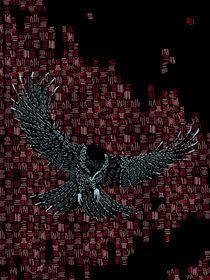 Sparrow  von Joshua Mikel