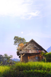 A Morning VIllage by aries pranata