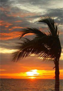 Wunderschöner Sonnenuntergang am Golf von Mexiko by Marita Zacharias
