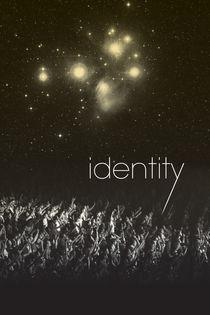 identity von Mark Bolek