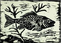 Riba by pesogrgic
