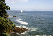 Scenic Coastal Maine by Tom Warner