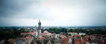 Stadtpanorama vom Wittenberg von Michael Krause