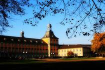 Bonn University by merla-merula