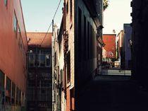 Urban duality von Lesley Bourne