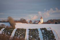 Winter in Nørre Bjert, Denmark von Stas Kalianov