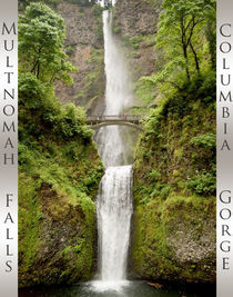 Multnomah Falls by DS Photography