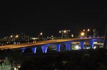Crossing to Miami Beach at Night by Juan Carlos  Medina Gedler