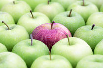 Red Apple among Green Apples von Neil Overy