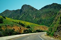 California - Green Road von Luis Henrique de Moraes Boucault