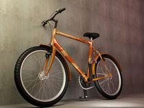 Finl-bike
