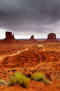 Monument Valley by David Pinzer