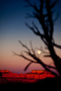 Full moon over the Canyon by David Pinzer