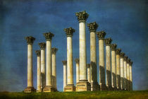 Capitol Columns Two by Susan Isakson