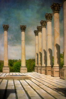 Capitol Columns Three by Susan Isakson