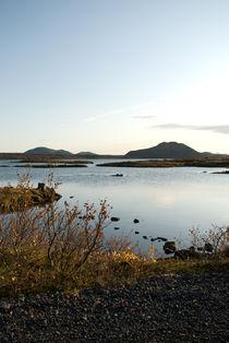 Ysch-iceland-2008-10-15-0242