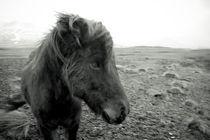 Iceland-2008-11-15-0243