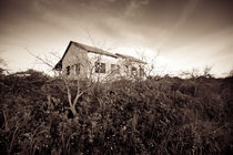 The old house on the heel 2 by Doron Edut