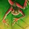 Frog-artflakes
