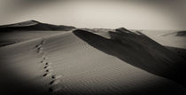 Namib-123