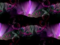 Schmetterling by Cornelia Greinke