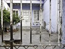 THE DOORS by Georgina Avila