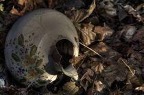 Verlorene Vase von Michael Krause