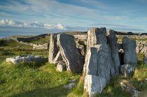 Inishmore, Ireland, 3533 von Stas Kalianov