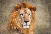 King of Beasts von Louise Heusinkveld