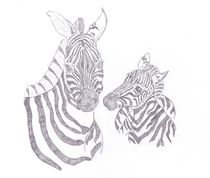 Zebra-mom-and-baby