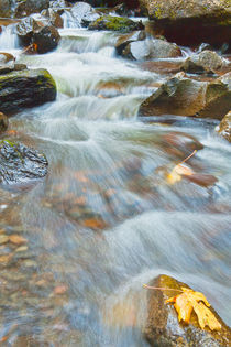 Downstream of Elowah Falls by Jon Mack