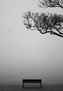 Grey Morning by Emrah Kara