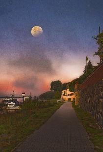 Elbuferweg by pahit