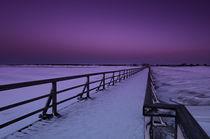 Winterstimmung  by Cornelia Dettmer