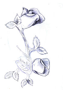 Rose sculpture sketch by Rita Oliveira