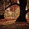 Herbstiiipoesie