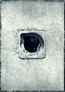 manhole cover  #085 by ivo sedlacek