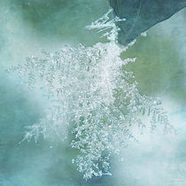 Kristalljahreszeit
