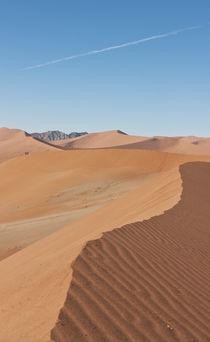 Namib 2 by Hartmut Fittkau