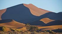 Namib 4 by Hartmut Fittkau