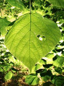 Portrait of a Wounded Leaf von Nizar Bredan