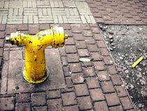 Fire hydrant von Peet Wolmarans