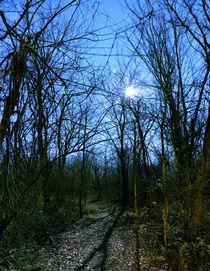 Moon-path