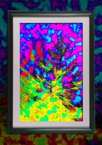 framed im Rahmen by Pierre Sonderegger