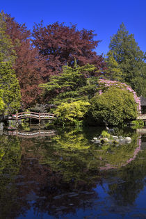 Japanese Garden at Hatley Park in Victoria, British Columbia, Canada by Louise Heusinkveld