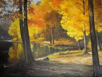 Autumn Silence /  Stille Herbst von Apostolescu  Sorin